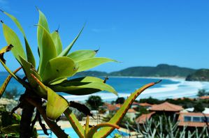 Best Hostels in Buzios, Brazil for Solo Travellers and Backpackers