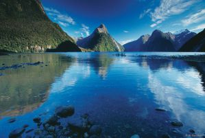 Cheap Tours and Activities in Te Anau and the Milford Sound