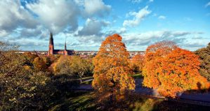 Hostels in Uppsala for Students, Backpackers, and Budget Travelers