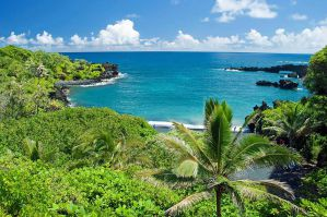Best Hostels in Maui for Backpackers and Solo Travellers