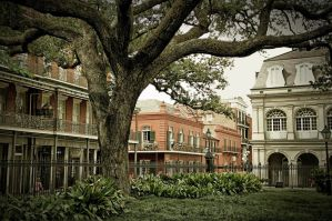 Best Hostels in New Orleans for Solo Travellers and Backpackers