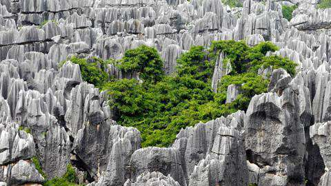 The Stone Forest, Kunming, Yunnan, China