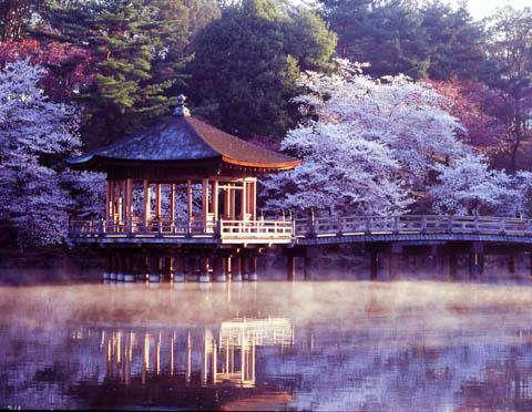 Ukimido Pavilion, Nara, Japan (©NARA TOURISM FEDERATION/©JNTO)