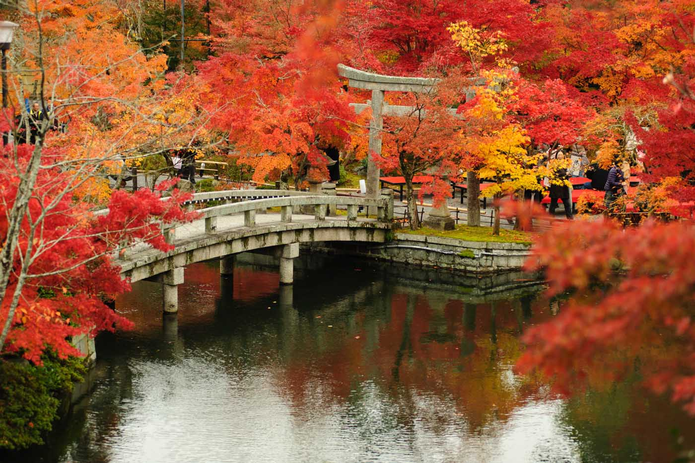 Best Cities To Travel To In Japan