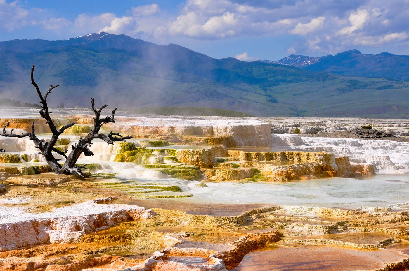 Yellowstone National Park Travel Costs Amp Prices Old
