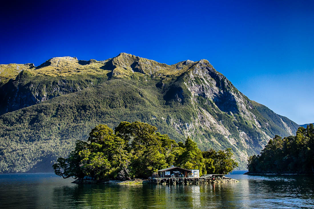 New Zealand Travel Budget Per Day