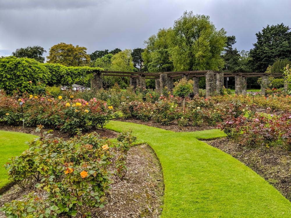 Belfast Rose Garden