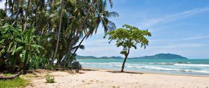 Best Hostels in Tamarindo for Solo Travellers and Groups