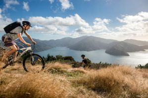 The Best Hostels in Picton and the Queen Charlotte Track