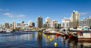 The Best Affordable Hostels in Punta del Este, Uruguay