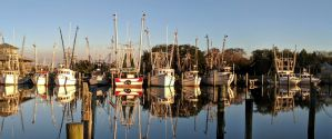 The Best Airbnb & VRBO Vacation Rentals in Apalachicola, Florida