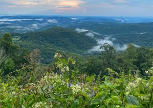 10 Best Airbnb Cabins & Mountain Houses in Boone, NC
