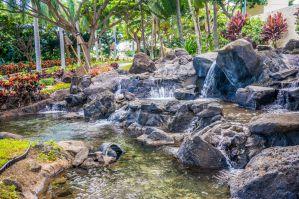 Best Beach Houses and Vacation Rentals Near Ka'a'awa