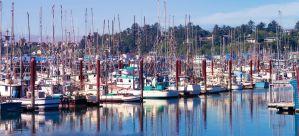 Best Beach Houses & VRBO Vacation Rentals in Newport, Oregon
