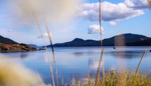 Best Beach Cabins & Vacation Homes on Orcas Island in the San Juan Islands