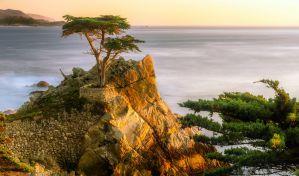 Best Airbnb & VRBO Vacation Rentals in Pebble Beach
