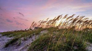 The Best Sea Pines Vacation Rental Houses on Hilton Head Island