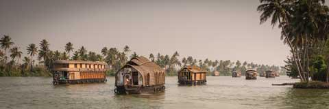Houseboats on the Backwaters of Kerala
